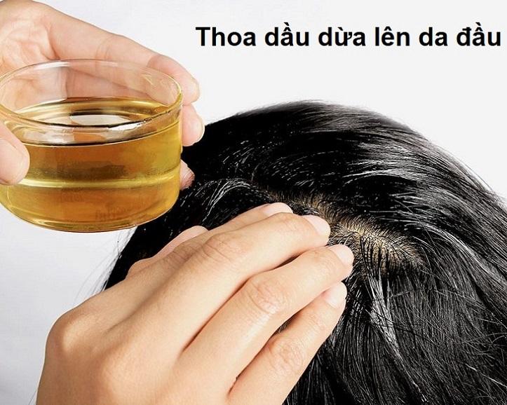 Thoa dầu dừa lên tóc giúp tóc và da đầu khỏe mạnh